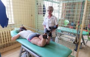 Nowe przepisy  obowiązują także w Poradni Rehabilitacyjnej bocheńskiego szpitala